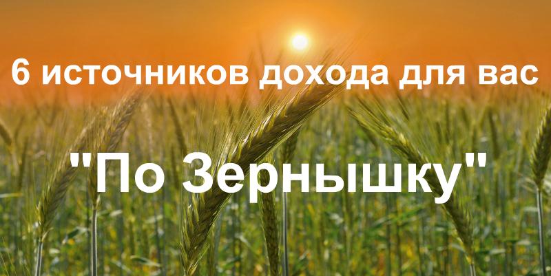 Курс По Зернышку. 6 источников дохода на автомате, 3000 руб. в день